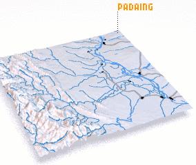 3d view of Padaing