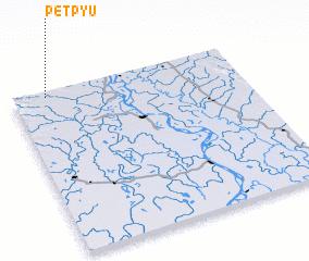3d view of Petpyu
