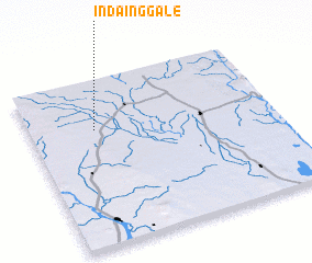 3d view of Indainggale