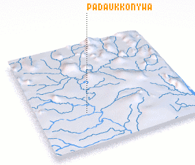 3d view of Padaukkonywa