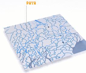 3d view of Paya