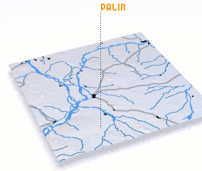 3d view of Palin