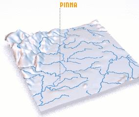 3d view of Pinma