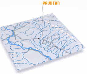 3d view of Pauktan