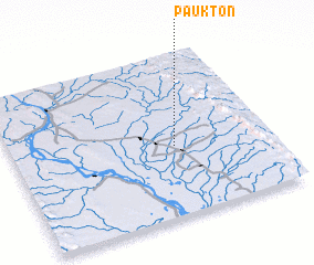 3d view of Paukton
