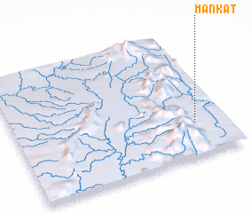 3d view of Mankat