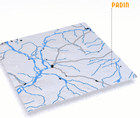 3d view of Padin