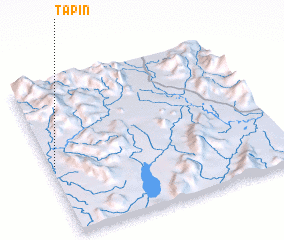 3d view of Tapin