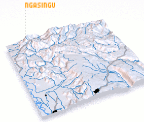 3d view of Ngasingu