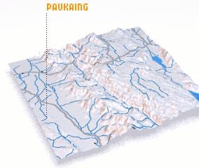 3d view of Paukaing