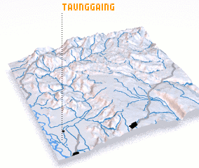 3d view of Taunggaing