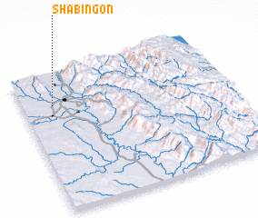 3d view of Shabingon