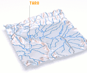 3d view of Taro