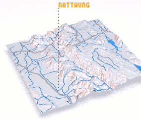 3d view of Nattaung