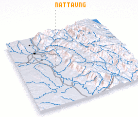 3d view of Nattaung