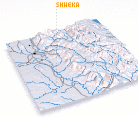 3d view of Shweka