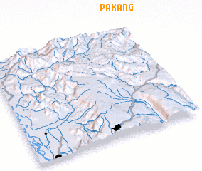 3d view of Pakang