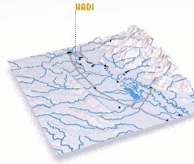 3d view of Wadi