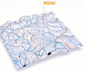 3d view of Medaw