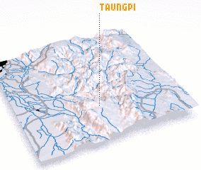3d view of Taungpi