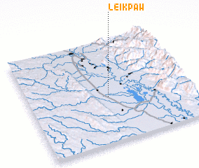 3d view of Leikpaw