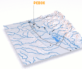 3d view of Pebok