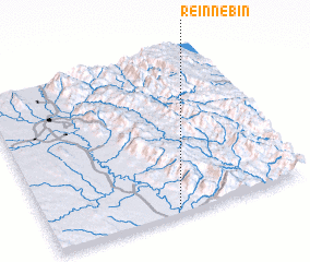 3d view of Reinnebin
