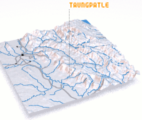 3d view of Taungpatle