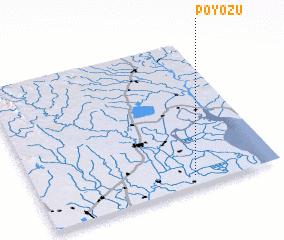 3d view of Poyozu