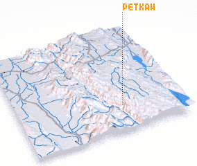 3d view of Petkaw