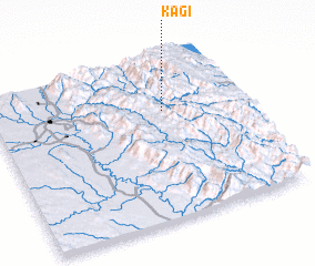 3d view of Kagi