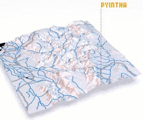 3d view of Pyintha