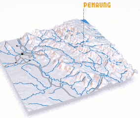 3d view of Pemaung