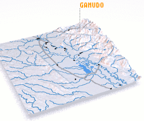 3d view of Gamudo