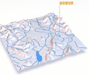 3d view of Woibum