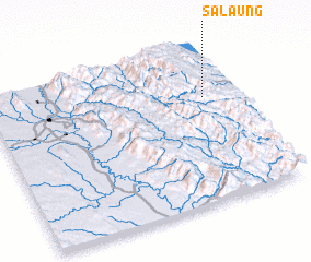3d view of Salaung