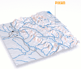 3d view of Pikan