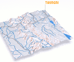 3d view of Taungni