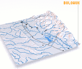 3d view of Bolo-auk