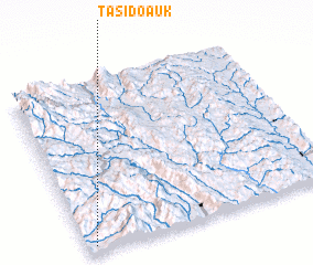 3d view of Tasido Auk