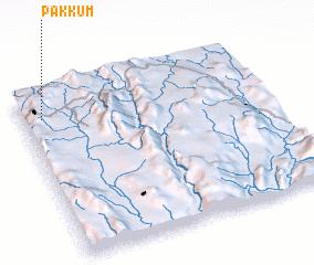 3d view of Pakkum