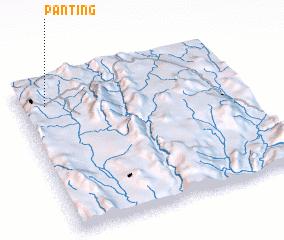 3d view of Panting