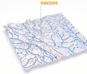 3d view of Pawsuko
