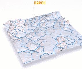 3d view of Napek