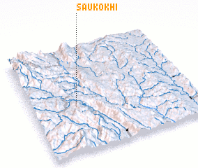 3d view of Saukokhi