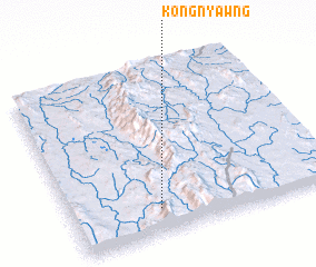 3d view of Kong Nyawng
