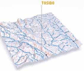 3d view of Tosido