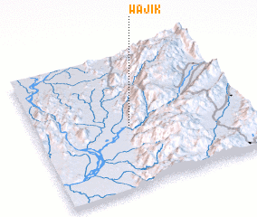 3d view of Wajik