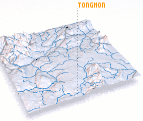 3d view of Tongmon
