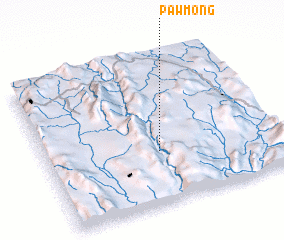 3d view of Pawmong